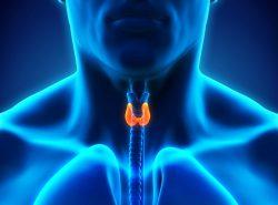 Hypothyroidism ( Underactive Thyroid )